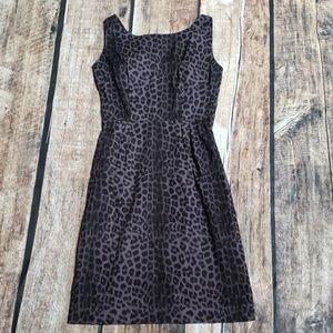 Trashy diva smoke leopard dress *Final price